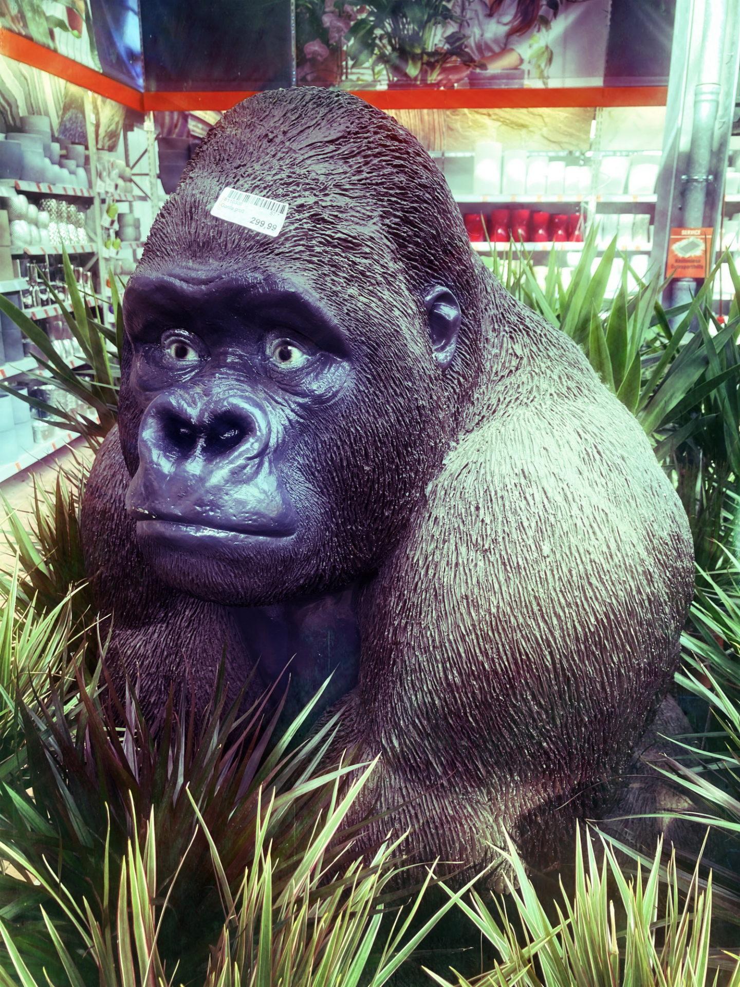 Gorilla bei OBI